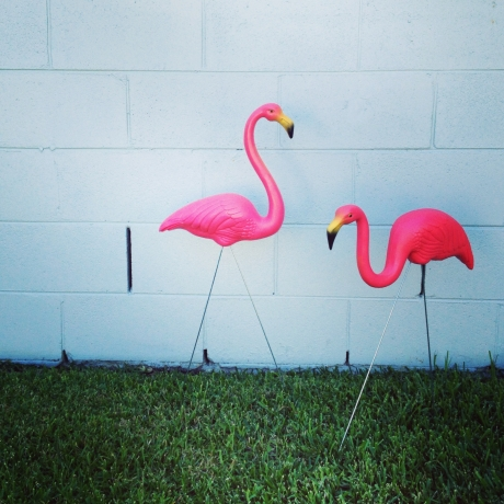 Don Featherston plastic flamingos Australia