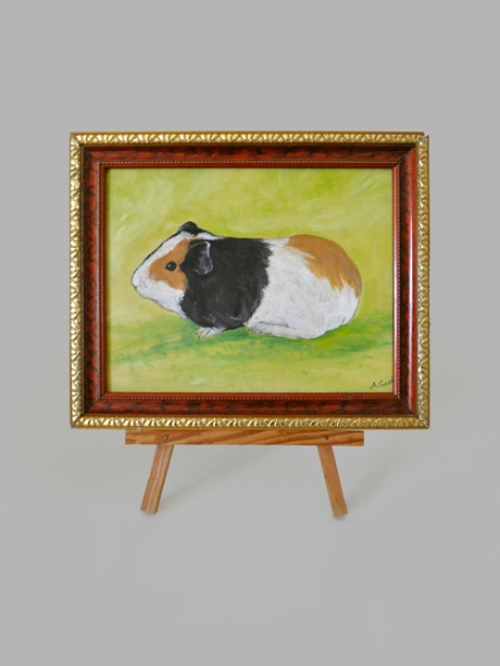 ALBERT_guinea pig portrair vertical