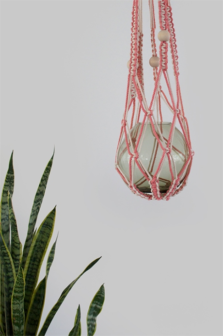 Peach ouchflower macrame mother in laws tongue copy