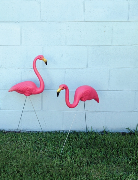 Featherstone Flamingos pair urban rustic
