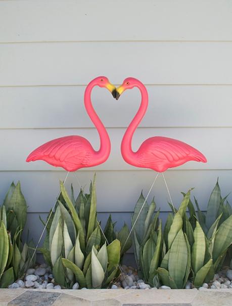 matching flamingo love