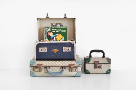 little vintage cases 2