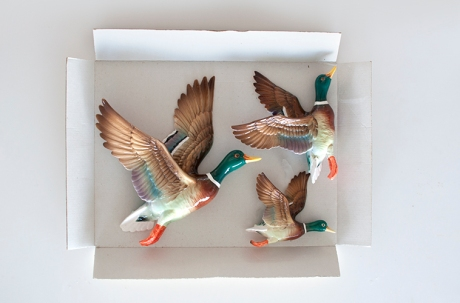 flying china ducks in a box rect